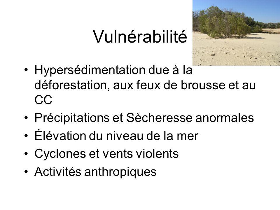 Vulnérabilité Hypersédimentation due à la déforestation, aux feux de brousse et au CC Précipitations et Sècheresse anormales Élévation du niveau de la
