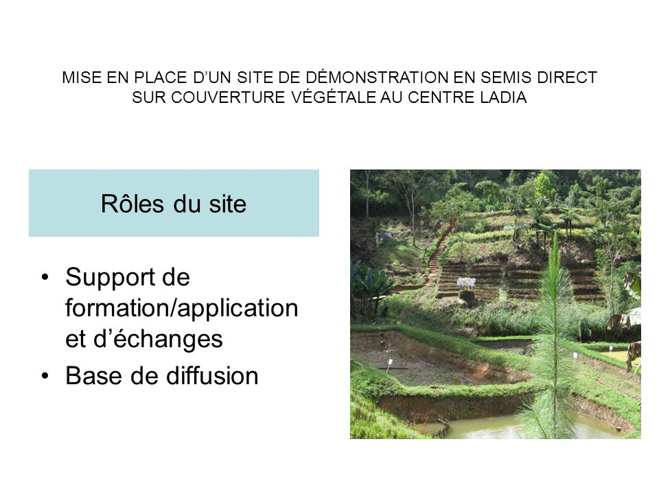 Support de formation/application et déchanges Base de diffusion Rôles du site MISE EN PLACE DUN SITE DE DÉMONSTRATION EN SEMIS DIRECT SUR COUVERTURE V