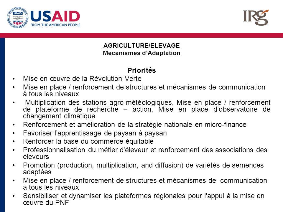 AGRICULTURE/ELEVAGE Mecanismes dAdaptation Priorités Mise en œuvre de la Révolution Verte Mise en place / renforcement de structures et mécanismes de