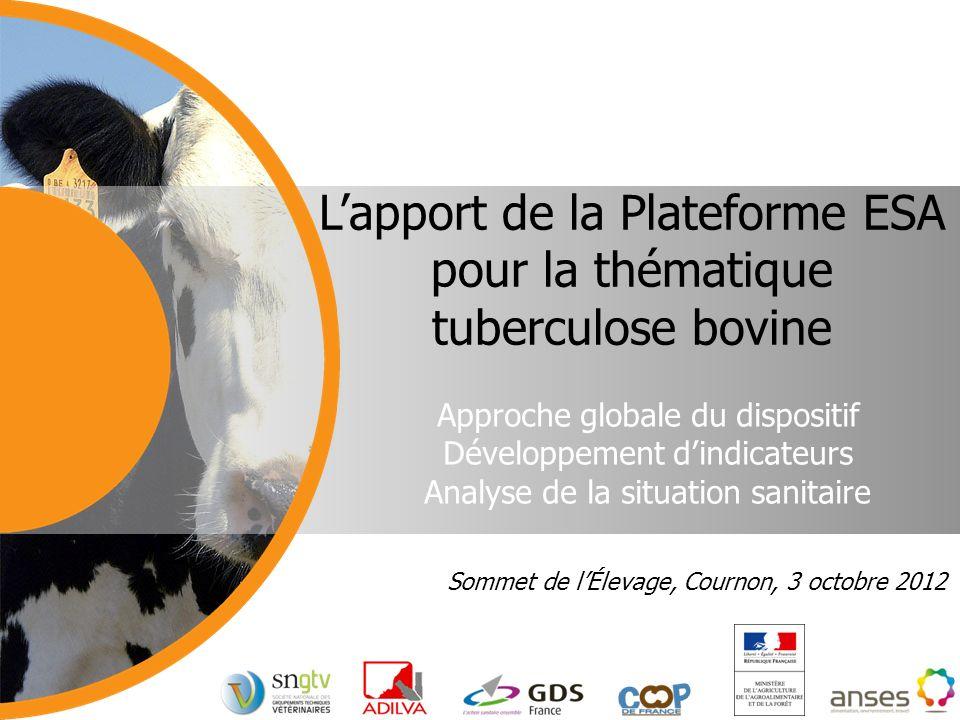 Approche globale du dispositif Développement dindicateurs Analyse de la situation sanitaire Lapport de la Plateforme ESA pour la thématique tuberculos