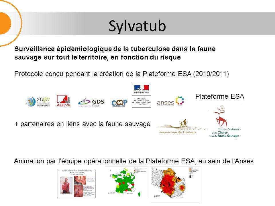 Sylvatub Plateforme ESA + partenaires en liens avec la faune sauvage Surveillance épidémiologique de la tuberculose dans la faune sauvage sur tout le