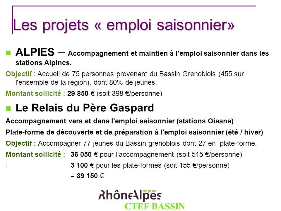 CTEF BASSIN GRENOBLOIS Les projets « emploi saisonnier» ALPIES – Accompagnement et maintien à l'emploi saisonnier dans les stations Alpines. Objectif