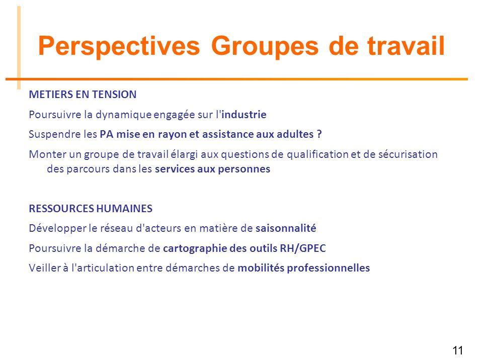 11 Perspectives Groupes de travail METIERS EN TENSION Poursuivre la dynamique engagée sur l industrie Suspendre les PA mise en rayon et assistance aux adultes .