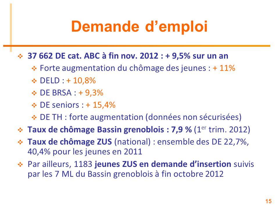 15 Demande demploi 37 662 DE cat. ABC à fin nov. 2012 : + 9,5% sur un an Forte augmentation du chômage des jeunes : + 11% DELD : + 10,8% DE BRSA : + 9