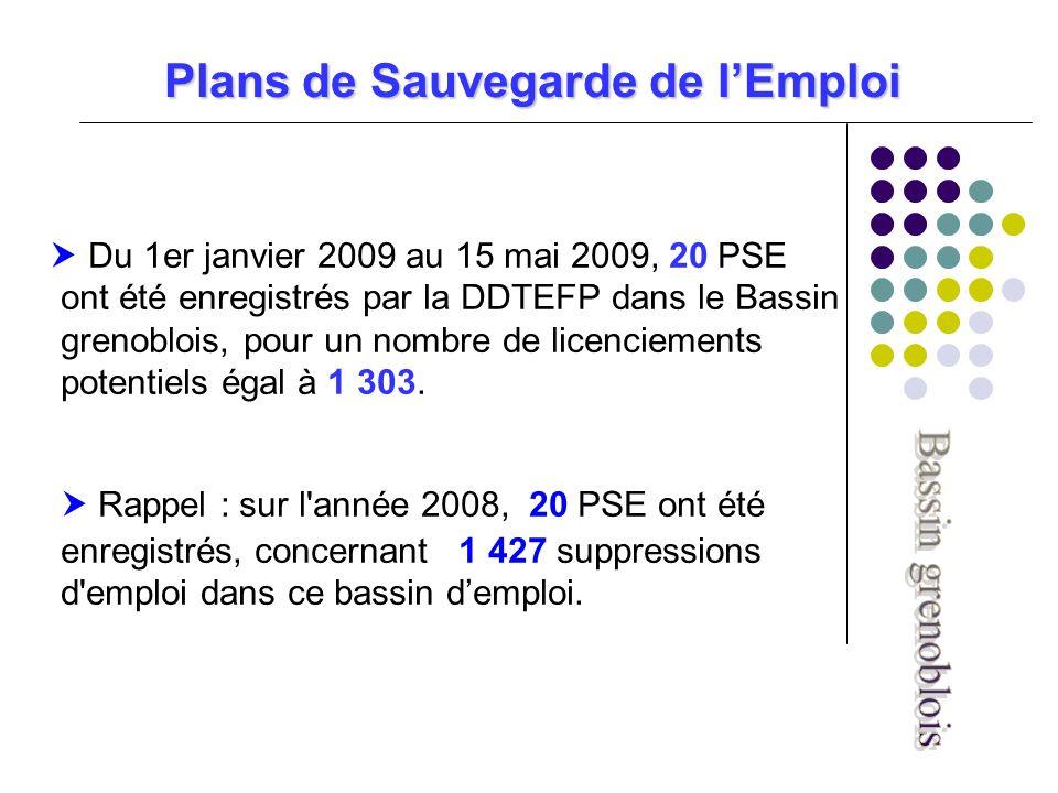 Plans de Sauvegarde de lEmploi Du 1er janvier 2009 au 15 mai 2009, 20 PSE ont été enregistrés par la DDTEFP dans le Bassin grenoblois, pour un nombre de licenciements potentiels égal à 1 303.