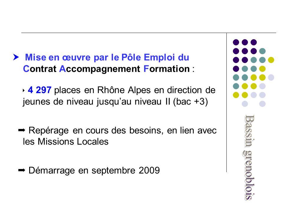 Mise en œuvre par le Pôle Emploi du Contrat Accompagnement Formation : 4 297 places en Rhône Alpes en direction de jeunes de niveau jusquau niveau II (bac +3) Repérage en cours des besoins, en lien avec les Missions Locales Démarrage en septembre 2009