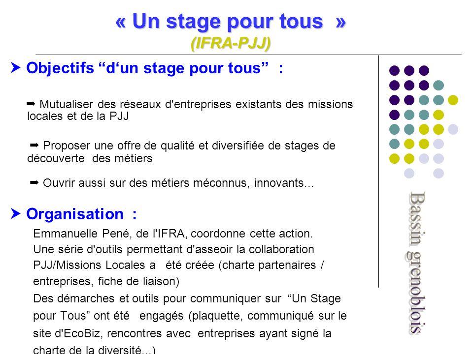 « Un stage pour tous » (IFRA-PJJ) Objectifs dun stage pour tous : Mutualiser des réseaux d entreprises existants des missions locales et de la PJJ Proposer une offre de qualité et diversifiée de stages de découverte des métiers Ouvrir aussi sur des métiers méconnus, innovants...