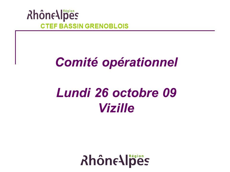 Comité opérationnel Lundi 26 octobre 09 Vizille CTEF BASSIN GRENOBLOIS