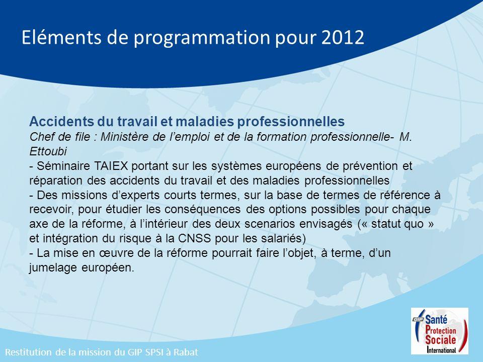Eléments de programmation pour 2012 Accidents du travail et maladies professionnelles Chef de file : Ministère de lemploi et de la formation professio
