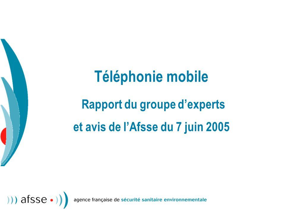 Téléphonie mobile Rapport du groupe dexperts et avis de lAfsse du 7 juin 2005