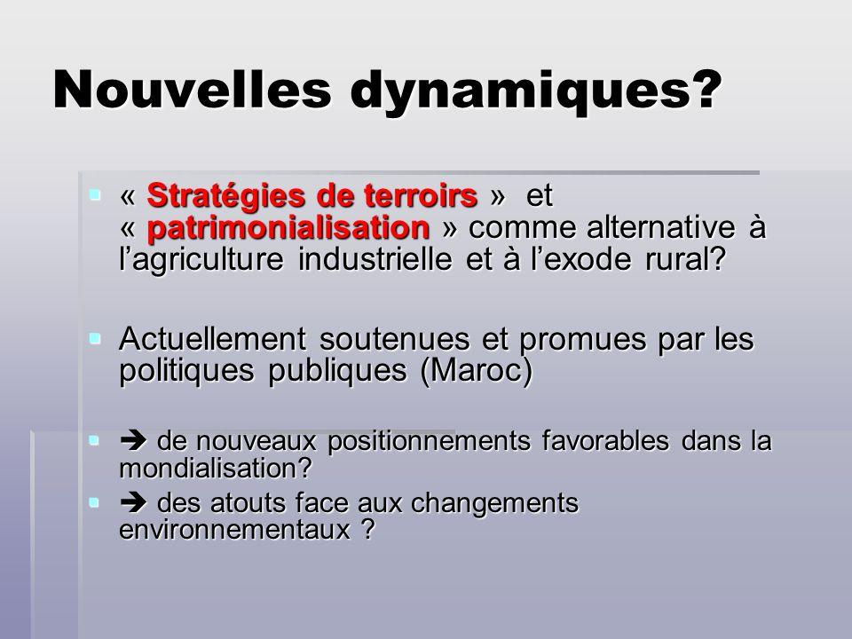 Nouvelles dynamiques? « Stratégies de terroirs » et « patrimonialisation » comme alternative à lagriculture industrielle et à lexode rural? « Stratégi