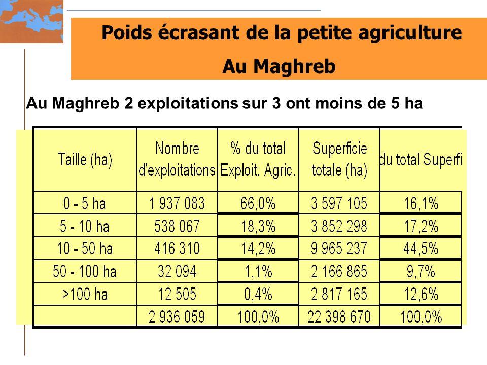 Poids écrasant de la petite agriculture Au Maghreb Au Maghreb 2 exploitations sur 3 ont moins de 5 ha