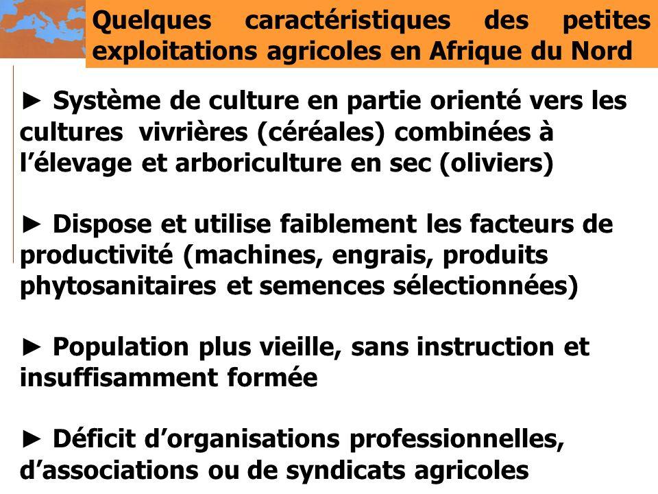 Quelques caractéristiques des petites exploitations agricoles en Afrique du Nord Système de culture en partie orienté vers les cultures vivrières (cér