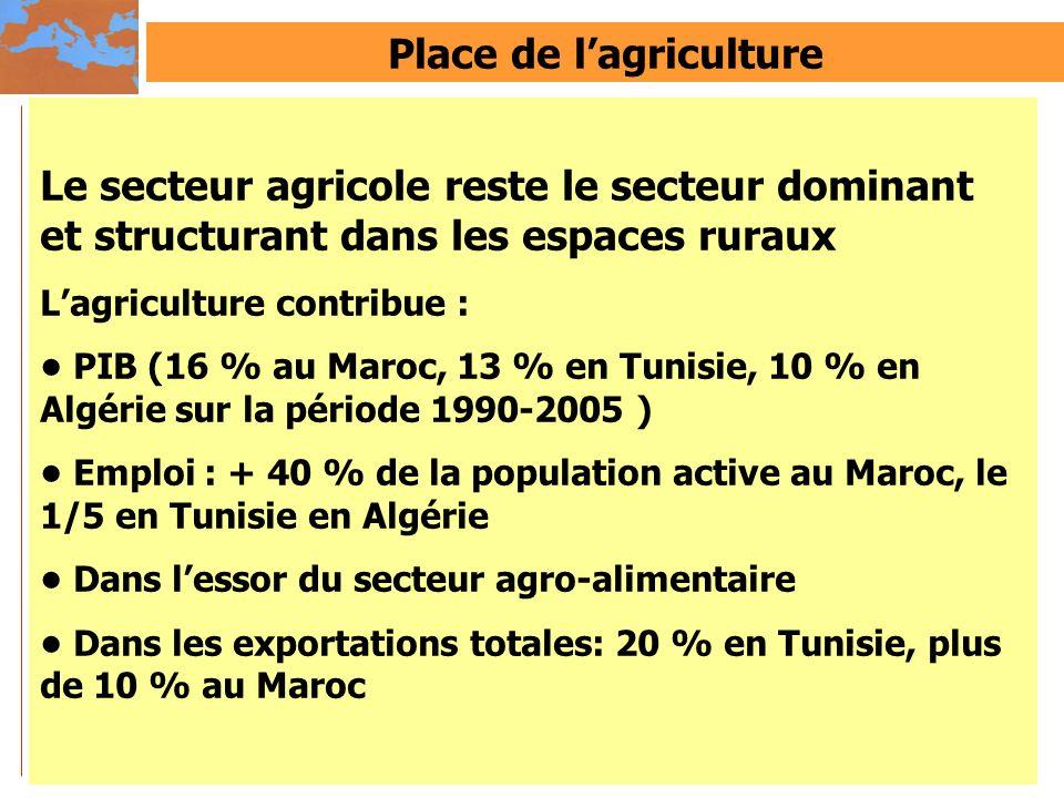 Place de lagriculture Le secteur agricole reste le secteur dominant et structurant dans les espaces ruraux Lagriculture contribue : PIB (16 % au Maroc