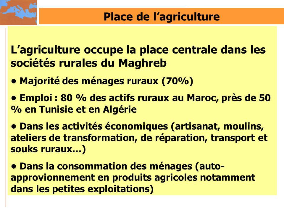 Place de lagriculture Lagriculture occupe la place centrale dans les sociétés rurales du Maghreb Majorité des ménages ruraux (70%) Emploi : 80 % des a