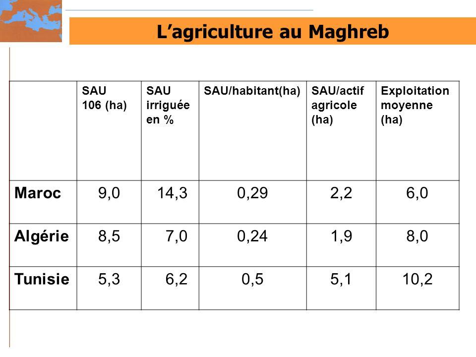 Lagriculture au Maghreb SAU 106 (ha) SAU irriguée en % SAU/habitant(ha)SAU/actif agricole (ha) Exploitation moyenne (ha) Maroc9,0 14,30,292,26,0 Algér