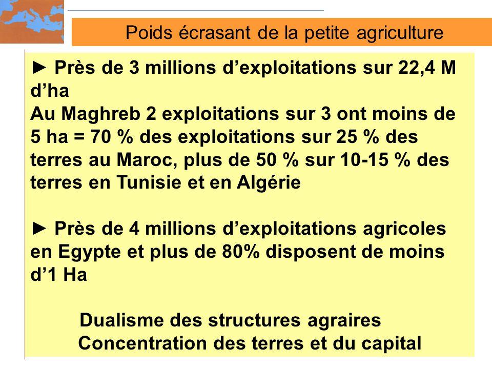 Poids écrasant de la petite agriculture Près de 3 millions dexploitations sur 22,4 M dha Au Maghreb 2 exploitations sur 3 ont moins de 5 ha = 70 % des