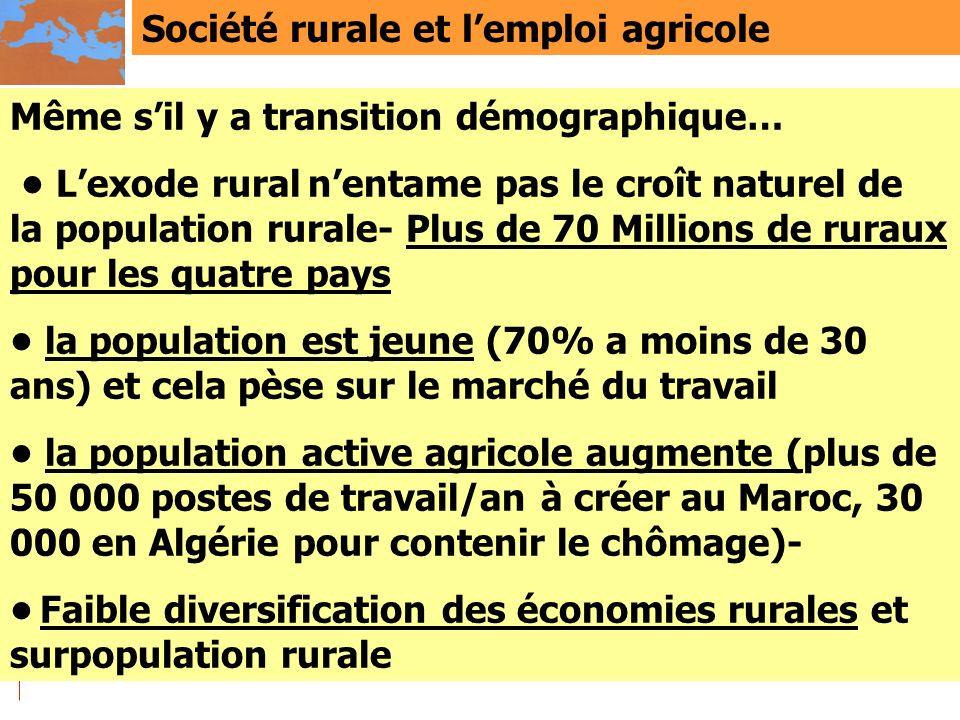Société rurale et lemploi agricole Même sil y a transition démographique… Lexode rural nentame pas le croît naturel de la population rurale- Plus de 7