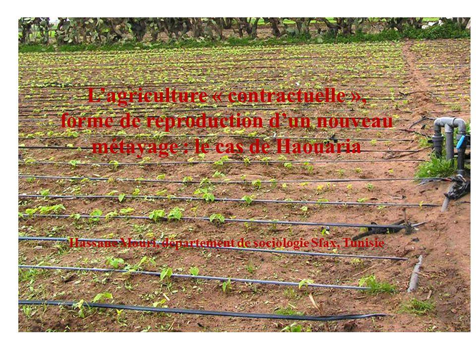 Lagriculture « contractuelle », forme de reproduction dun nouveau métayage : le cas de Haouaria Hassane Mouri, département de sociologie Sfax, Tunisie