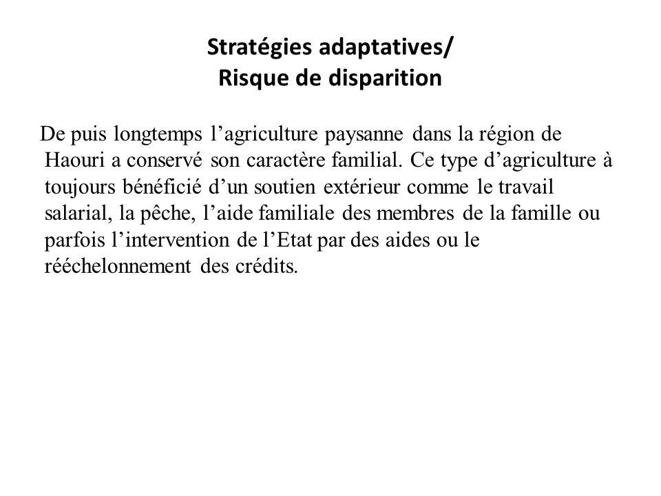 Stratégies adaptatives/ Risque de disparition De puis longtemps lagriculture paysanne dans la région de Haouri a conservé son caractère familial. Ce t