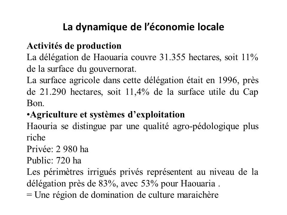 La dynamique de léconomie locale Activités de production La délégation de Haouaria couvre 31.355 hectares, soit 11% de la surface du gouvernorat. La s