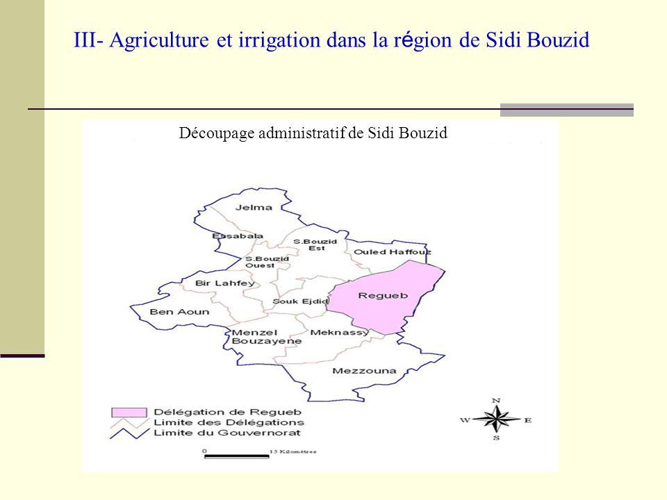 III- Agriculture et irrigation dans la r é gion de Sidi Bouzid Le développement de l agriculture a crée un fort dynamisme concrétisé par laugmentation de la production de la région et de sa contribution à la valeur ajoutée agricole nationale (6%) et de 18 à 25% de la production nationale maraîchère (selon les campagnes) occupant ainsi la deuxième place au niveau national.