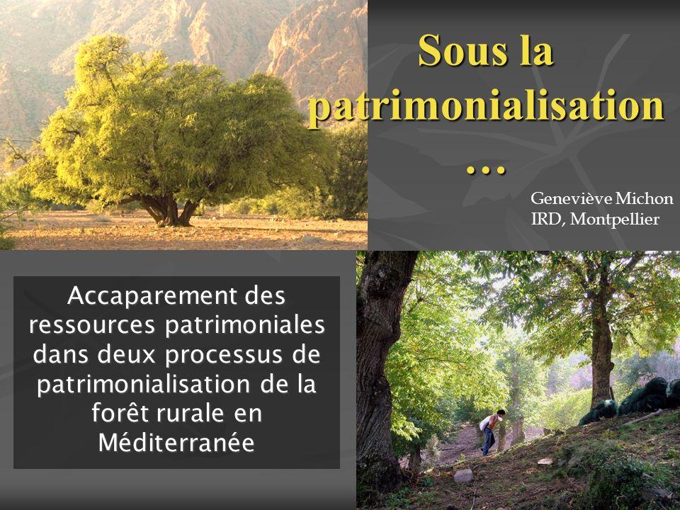 Sous la patrimonialisation … Accaparement des ressources patrimoniales dans deux processus de patrimonialisation de la forêt rurale en Méditerranée Ge