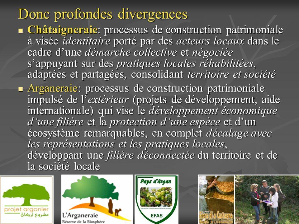 Donc profondes divergences Châtaigneraie: processus de construction patrimoniale à visée identitaire porté par des acteurs locaux dans le cadre dune d
