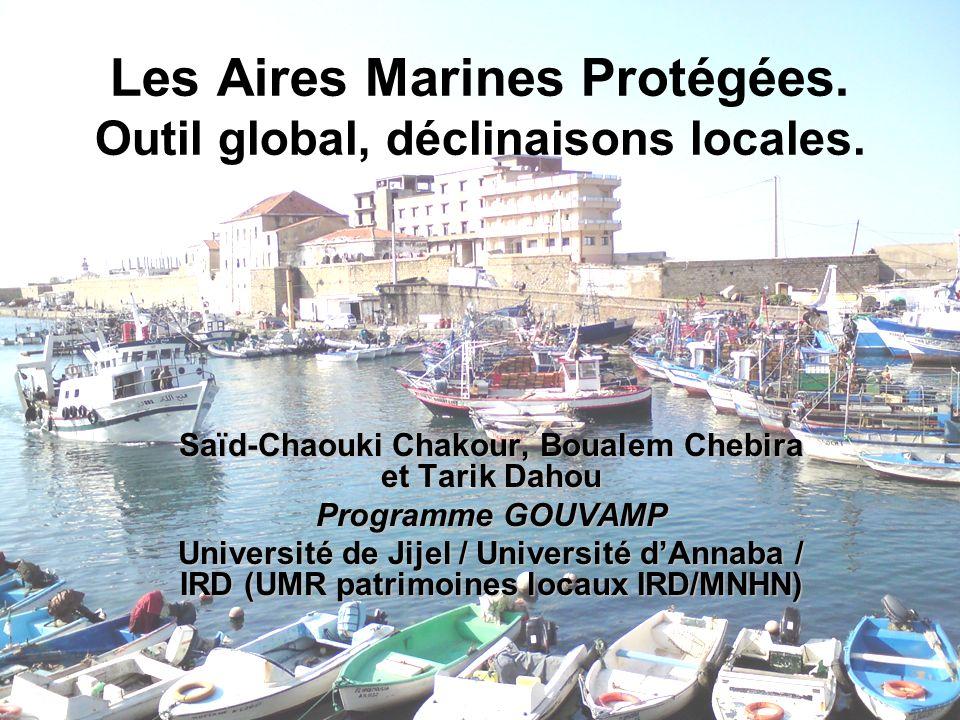 Dynamique de création dAMP en Méditerranée Forte dynamique internationale à lorigine de leur création Objectifs centraux dans le cadre de la convention de Barcelone et CDB AMP des îles habibas à lOuest et Extension des parcs côtiers de lEst algérien (Taza et El Kala)