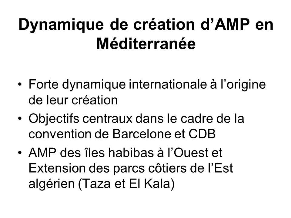 Dynamique de création dAMP en Méditerranée Forte dynamique internationale à lorigine de leur création Objectifs centraux dans le cadre de la conventio