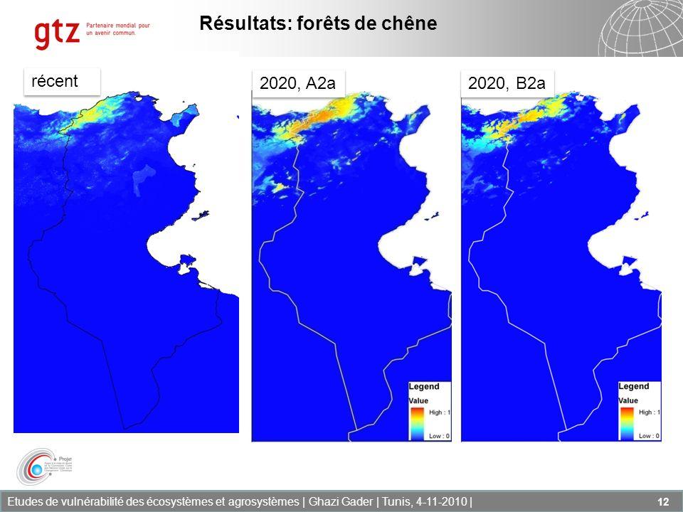 Etudes de vulnérabilité des écosystèmes et agrosystèmes | Ghazi Gader | Tunis, 4-11-2010 | 12 Résultats: forêts de chêne récent 2020, A2a 2020, B2a