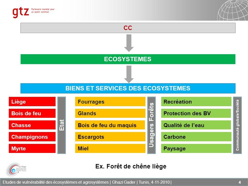 Etudes de vulnérabilité des écosystèmes et agrosystèmes | Ghazi Gader | Tunis, 4-11-2010 | 15 Produits/outils Un SIG permettant de fournir les informations suivantes : Létat actuel de lécosystème ainsi que la valeur économique des biens et services fournis par cet écosystème Les cartes de vulnérabilité de lécosystème en 2020 et 2050 selon différents scénarii disponibles pour la Tunisie Les cartes de vulnérabilisé de lécosystème par rapport à des évènements extrêmes (sécheresse prolongée) Lévaluation de la perte de la valeur économique des biens et services aux horizons 2020 et 2050.
