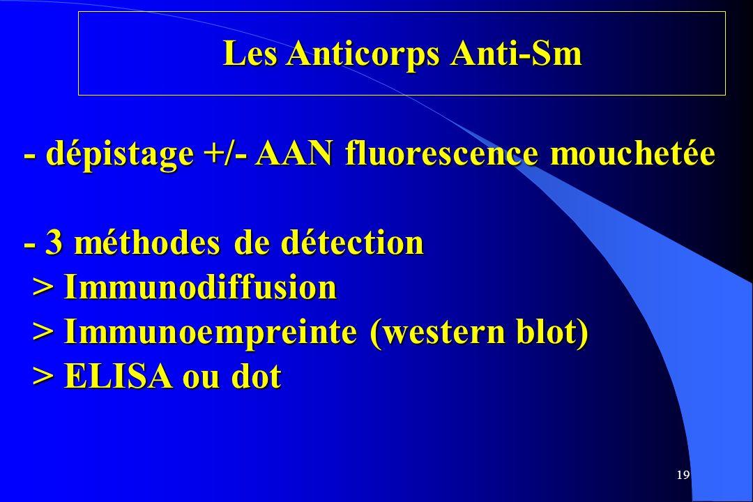 19 Les Anticorps Anti-Sm - dépistage +/- AAN fluorescence mouchetée - 3 méthodes de détection > Immunodiffusion > Immunoempreinte (western blot) > ELI