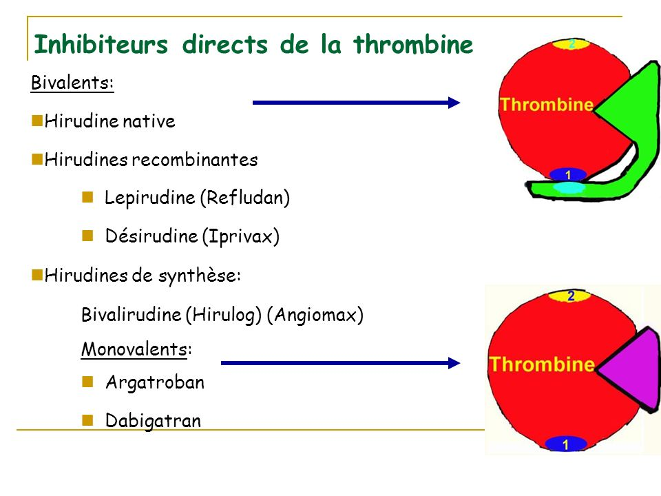 Inhibiteurs directs de la thrombine Bivalents: Hirudine native Hirudines recombinantes Lepirudine (Refludan) Désirudine (Iprivax) Hirudines de synthèse: Bivalirudine (Hirulog) (Angiomax) Monovalents: Argatroban Dabigatran