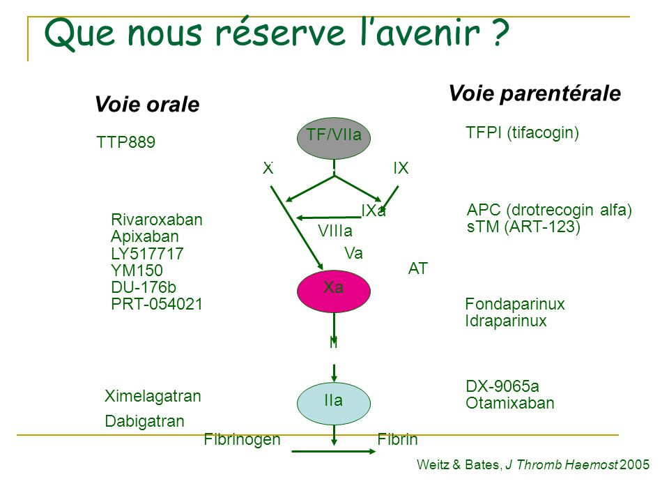 TFPI (tifacogin) Fondaparinux Idraparinux Rivaroxaban Apixaban LY517717 YM150 DU-176b PRT-054021 Ximelagatran Dabigatran Voie orale Voie parentérale D