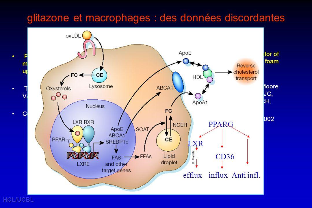 HCL/UCBL Hypolipémiants et prévention cardiovasculaire (essais randomisés vs placebo : morbi mortalité CV) LDLC % -30-25-20-15-10-50 RR % -40 -35 -30 -25 -20 -15 -10 -5 0 LRC HHS CARE 4 S LIPIDS AFCAPS WOSCOPSVAHIT HPS ALHAT ASCOT CARDS FIELD ASPEN 4D ALERT POSCH ns