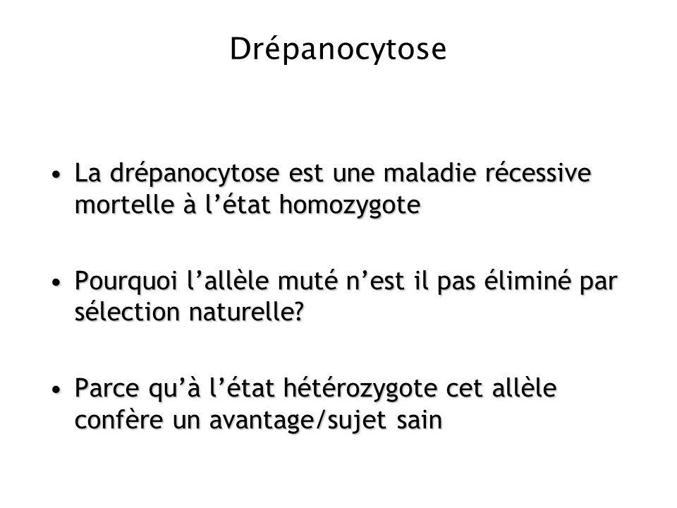 Drépanocytose La drépanocytose est une maladie récessive mortelle à létat homozygoteLa drépanocytose est une maladie récessive mortelle à létat homozy