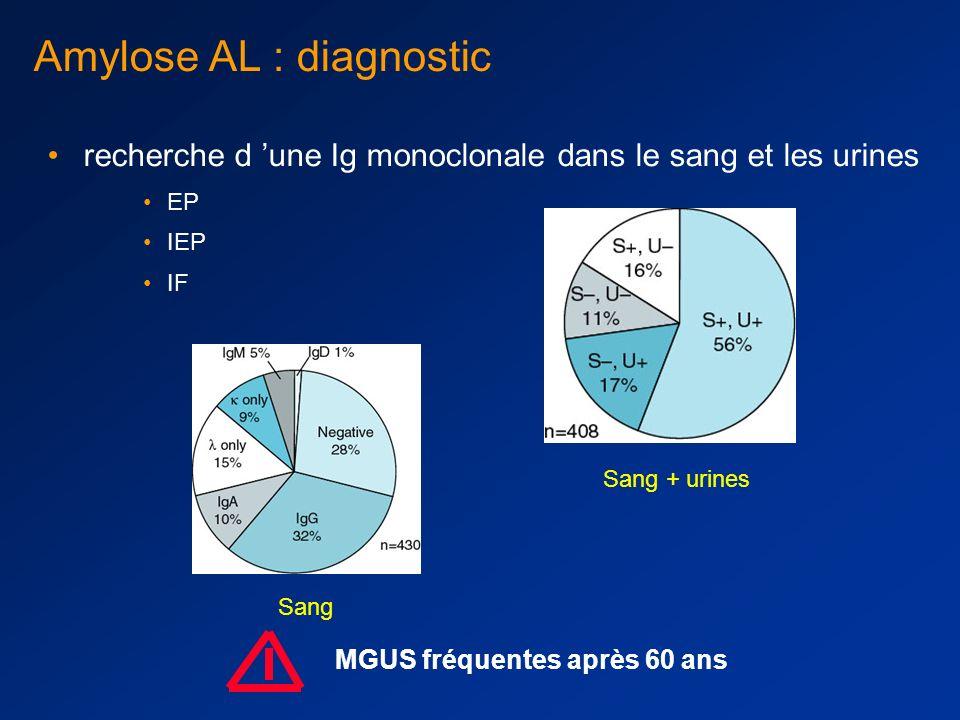Amylose AL: diagnostic Objectiver l amylose : rouge congo Typer l amylose : –Wright : résistance au permanganate, différencie l amylose AA des autres