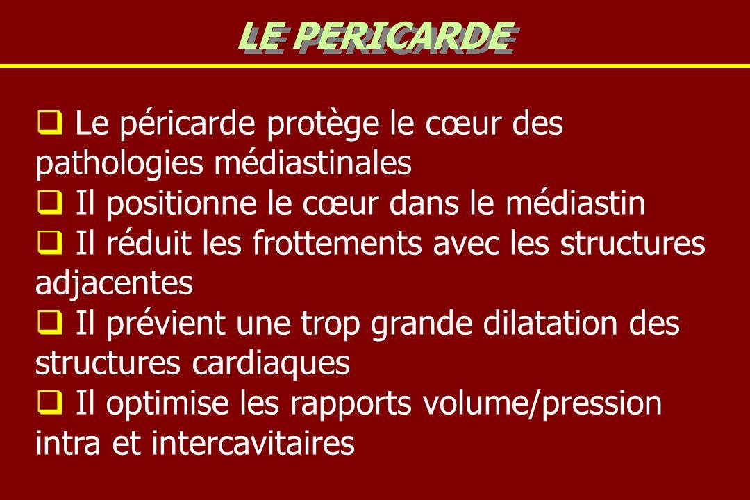 Le péricarde protège le cœur des pathologies médiastinales Il positionne le cœur dans le médiastin Il réduit les frottements avec les structures adjac