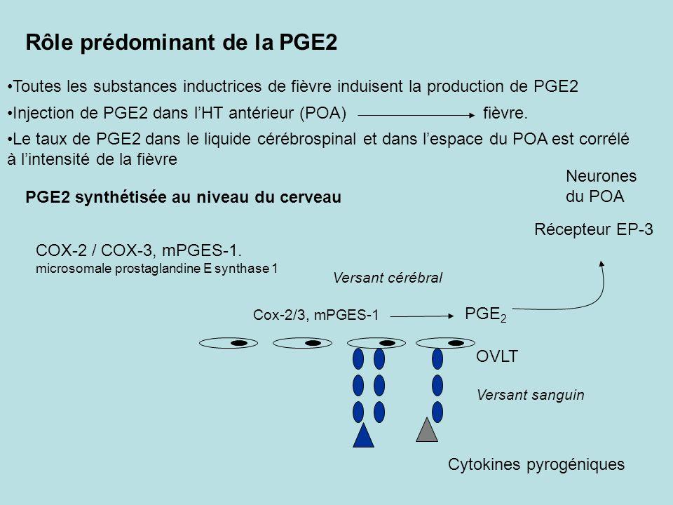 Rôle prédominant de la PGE2 COX-2 / COX-3, mPGES-1. microsomale prostaglandine E synthase 1 Cox-2/3, mPGES-1 PGE 2 Neurones du POA Récepteur EP-3 Inje