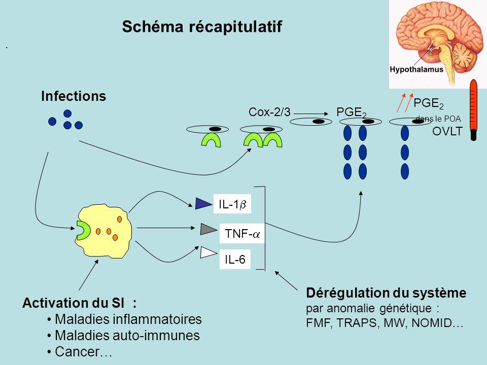 . IL-1 TNF- IL-6 OVLT PGE 2 dans le POA Infections Activation du SI : Maladies inflammatoires Maladies auto-immunes Cancer… Dérégulation du système pa