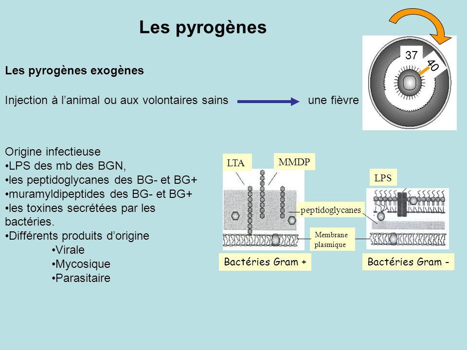 Les pyrogènes Les pyrogènes exogènes 37 40 Injection à lanimal ou aux volontaires sainsune fièvre Origine infectieuse LPS des mb des BGN, les peptidog
