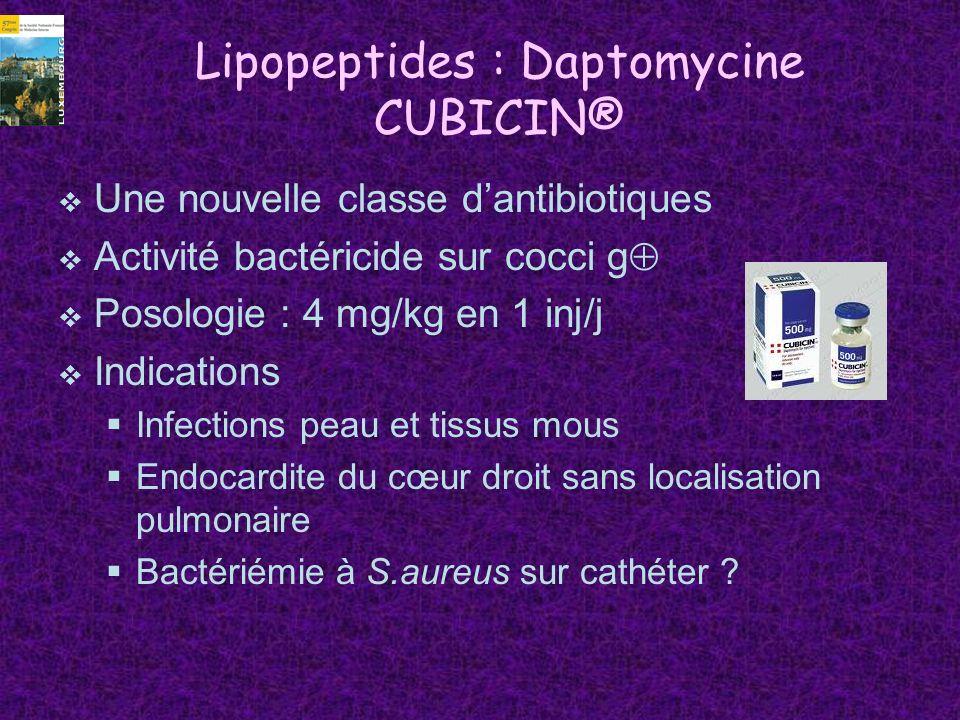 Lipopeptides : Daptomycine CUBICIN® Une nouvelle classe dantibiotiques Activité bactéricide sur cocci g Posologie : 4 mg/kg en 1 inj/j Indications Inf