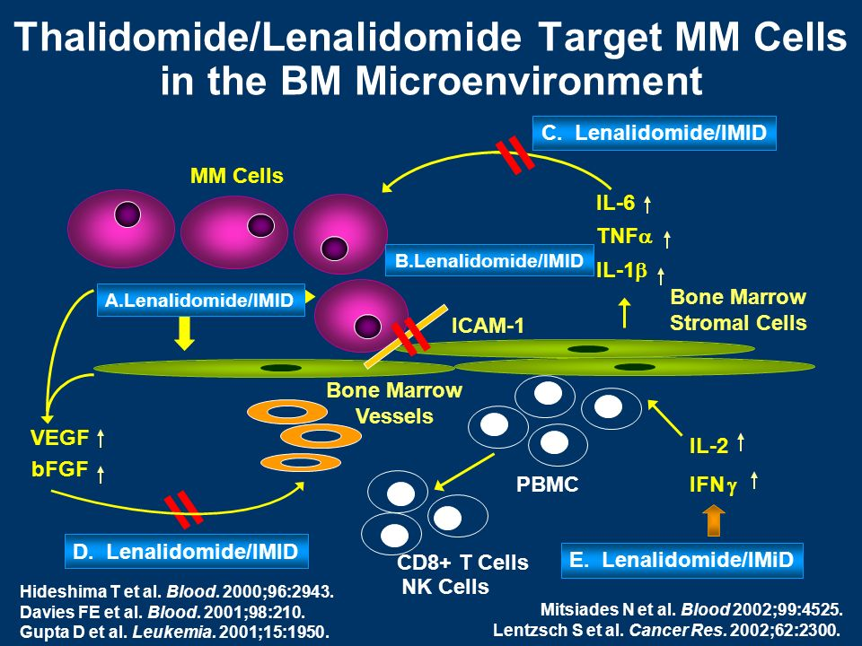 MM Cells Bone Marrow Stromal Cells PBMC IL-6 TNF IL-1 A.Lenalidomide/IMID IL-2 IFN CD8+ T Cells C. Lenalidomide/IMID E. Lenalidomide/IMiD Bone Marrow