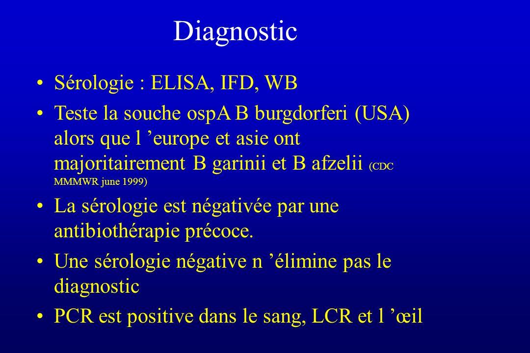 Diagnostic Sérologie : ELISA, IFD, WB Teste la souche ospA B burgdorferi (USA) alors que l europe et asie ont majoritairement B garinii et B afzelii (