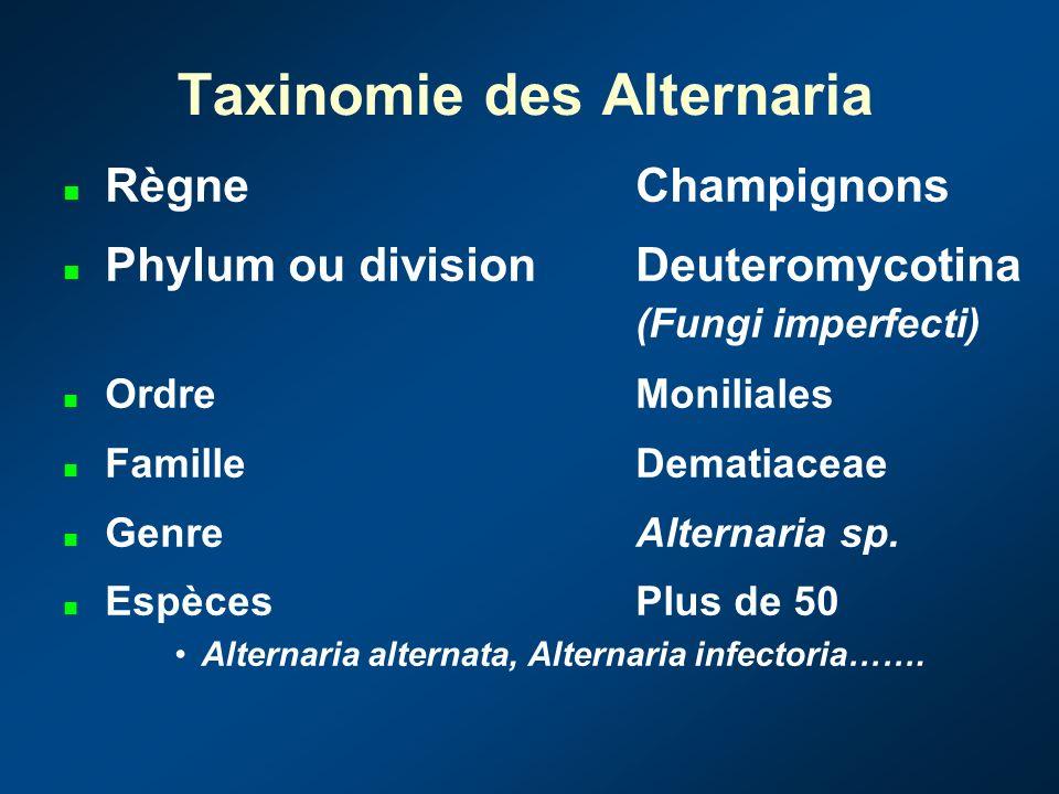 Taxinomie des Alternaria RègneChampignons Phylum ou divisionDeuteromycotina (Fungi imperfecti) OrdreMoniliales FamilleDematiaceae GenreAlternaria sp.