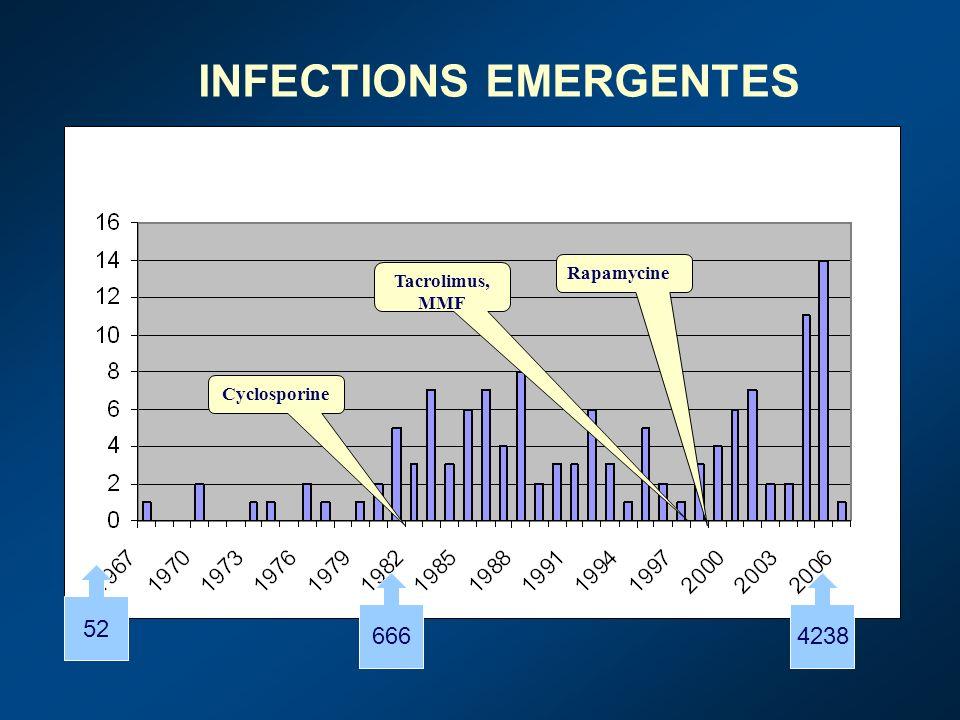 Lésions hémorragiquesA.altemata, Aspergillus spp, Candida spp, C.