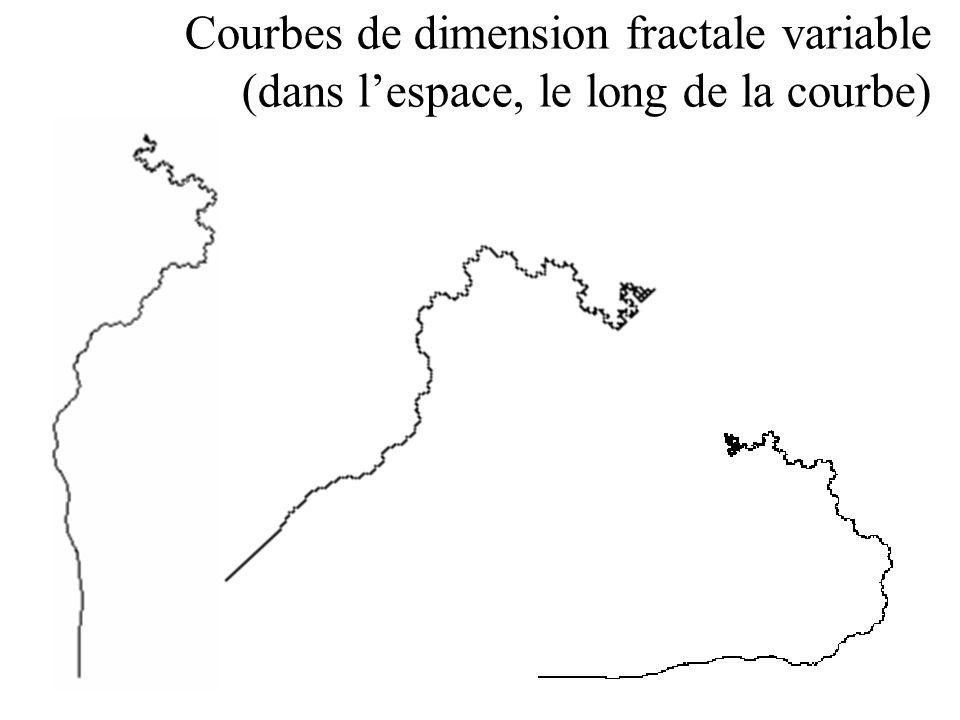 Courbes de dimension fractale variable (dans lespace, le long de la courbe)