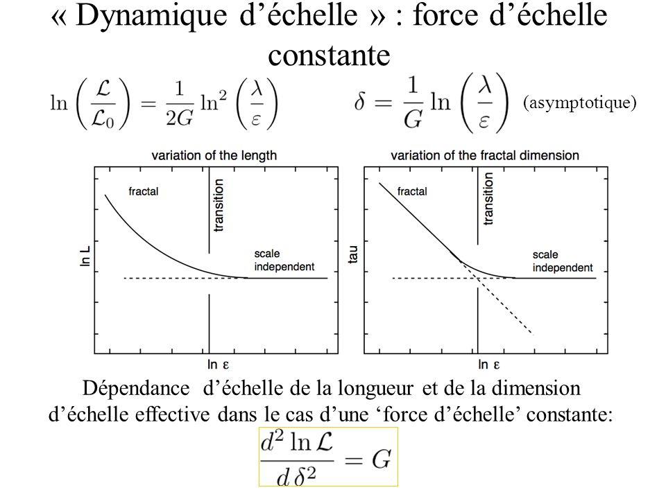 (asymptotique) Dépendance déchelle de la longueur et de la dimension déchelle effective dans le cas dune force déchelle constante: « Dynamique déchelle » : force déchelle constante