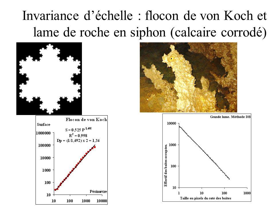 Invariance déchelle : flocon de von Koch et lame de roche en siphon (calcaire corrodé)